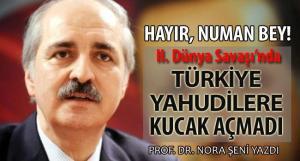 numan_kurtulmus_nora_seni