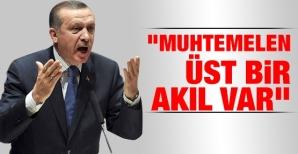 muhtemelen_ust_bir_akil_var_h39781