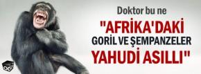afrikadaki-goril-ve-sempanzeler-yahudi-asilli-0102161200_m2